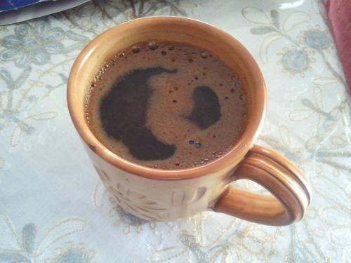 Ο καφές μωρό δεινόσαυρου