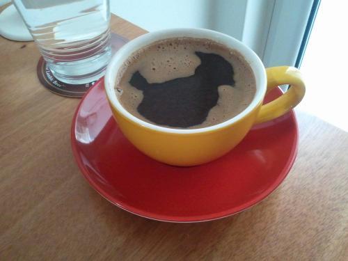 Ο καφές γεράκι