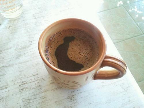 Ο καφές Εύβοια