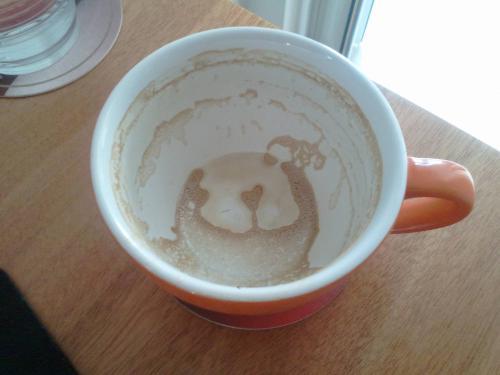 Ο καφές πισινός
