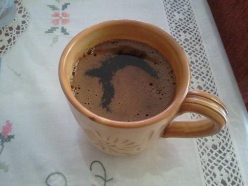 Ο καφές φώκια