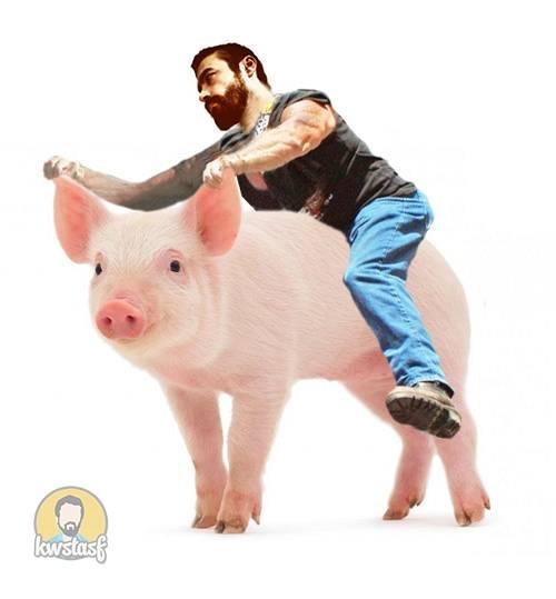 Πήρα γουρούνα