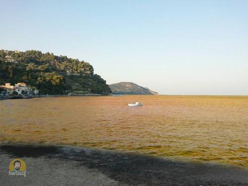 Θάλασσα λάδι
