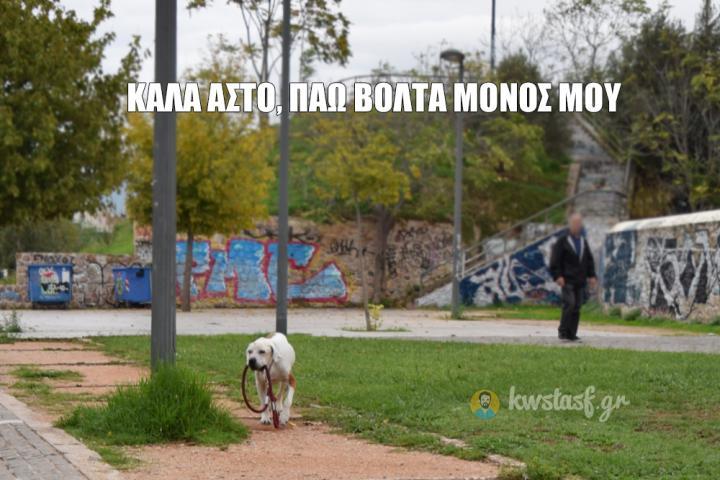 Ο αυτάρκης σκύλος