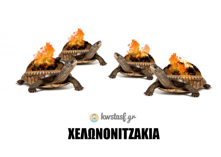 Χελωνονιτζάκια